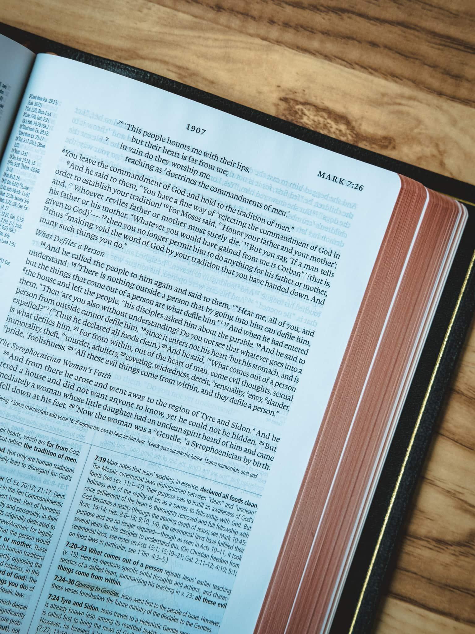 The Crossway ESV Heirloom Study Bible - The Newsprint